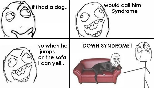 pets down syndrome couch dogs - 6818758912