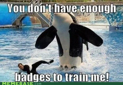 Pokémon training orca - 6818759936