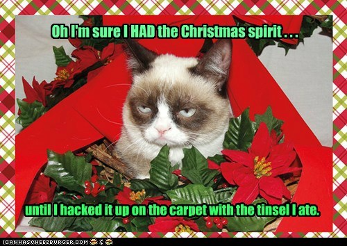 Oh I'm sure I HAD the Christmas spirit . . . until I hacked it up on the carpet with the tinsel I ate.