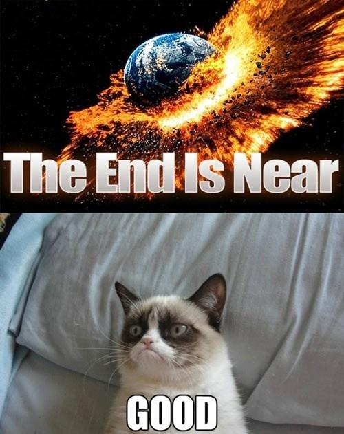 tardar sauce december 21 apocalypse Grumpy Cat Memes tard Cats - 6818889728
