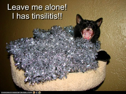 Leave me alone! I has tinsilitis!!