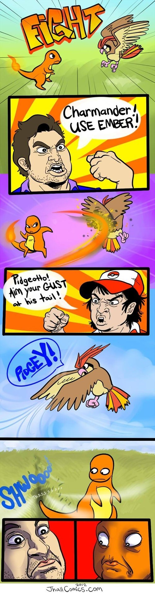 Battle,charmander,comic,pidgey
