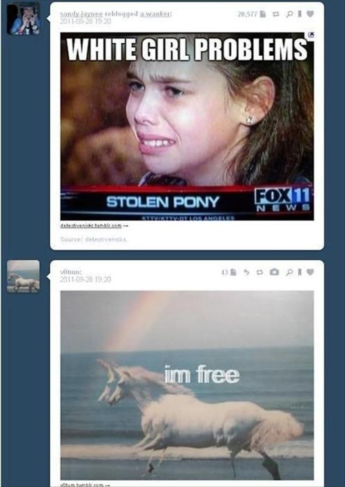 tumblr pony coincidence free - 6819150080