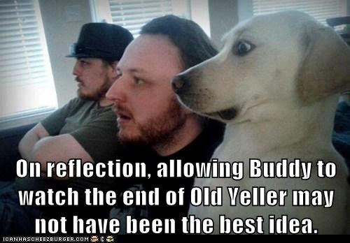 On reflection, allowing Buddy to watch the end of Old Yeller may not have been the best idea.