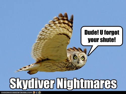 skydiving,falling,parachute,owls,nightmare,forgot