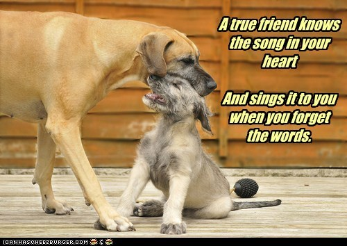 A true friend knows the song in your heart And sings it to you when you forget the words.