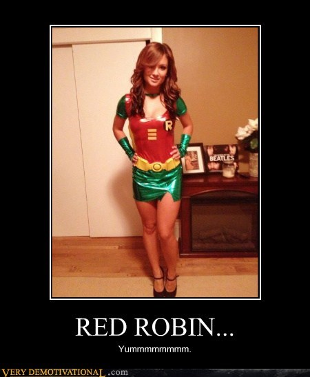 Sexy Ladies robin costume - 6822506496