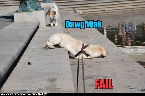 Dawg Wak FAIL