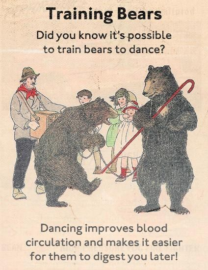 blood pressure today i learned training bears real facts