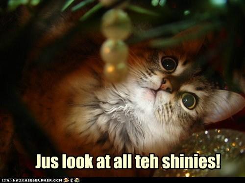 Jus look at all teh shinies!