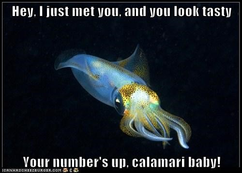 Hey, I just met you, and you look tasty  Your number's up, calamari baby!