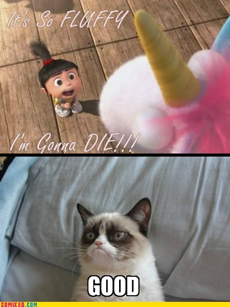 despicable me Fluffy Movie good Grumpy Cat - 6823246848