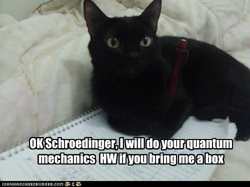 OK Schroedinger, I will do your quantum mechanics HW if you bring me a box