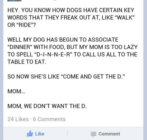 facebook,dinner,mom,dogs