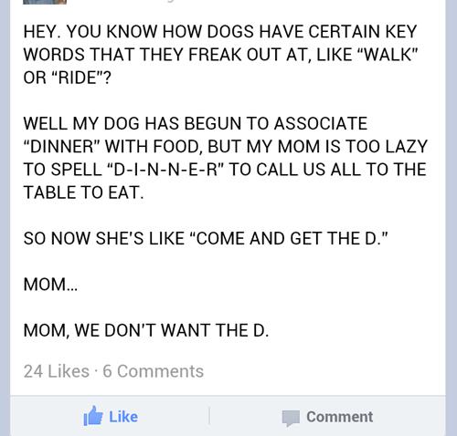 facebook dinner mom dogs - 6824533504