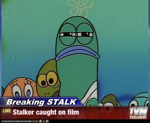 Breaking STALK - Stalker caught on film