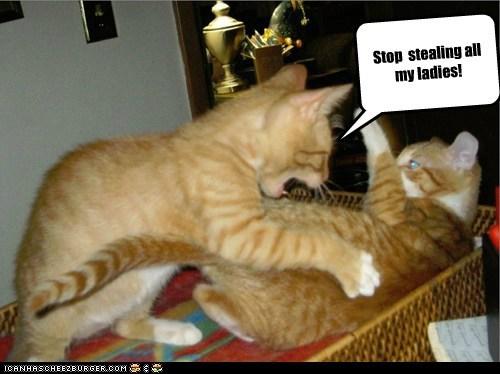 Cheezburger Image 6825401088