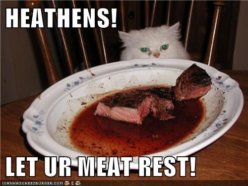 cook captions rest dinner bbq Cats meat - 6825409024