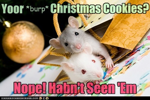 Yoor *burp* Christmas Cookies? Nope! Habn't Seen 'Em