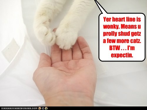 Yer heart line is wonky. Means u prolly shud getz a few more catz. BTW . . . I'm expectin.
