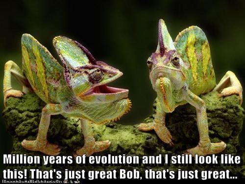evolution great iguanas - 6826869248