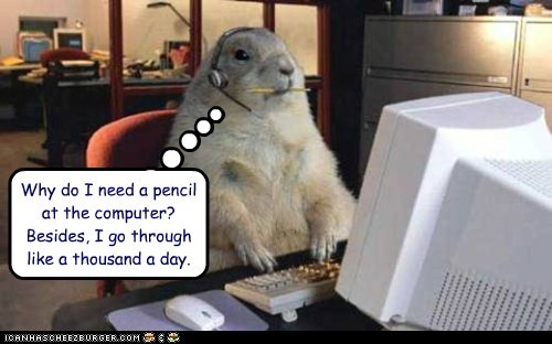 pencil,groundhogs,computer,eating,chewing,Prairie Dogs