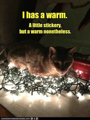 I has a warm. A little stickery, but a warm nonetheless.