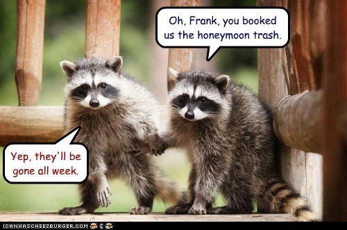 Oh, Frank, you booked us the honeymoon trash. Yep, they'll be gone all week.