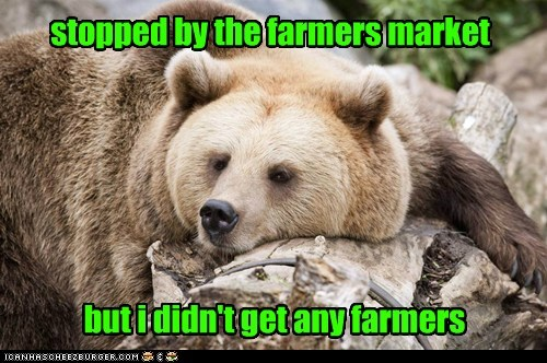 Sad disappointed farmers market eating people bears farmers