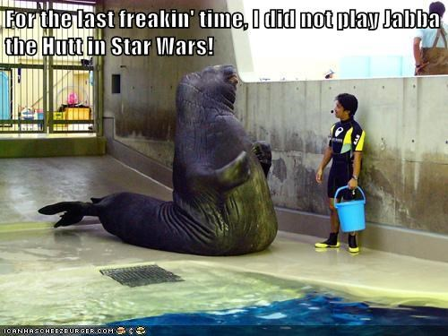 confusing,star wars,for the last time,jabba the hutt,walrus,lolrus
