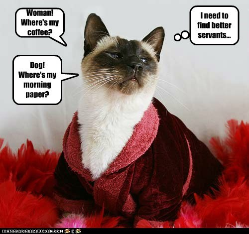 I need to find better servants... Woman! Where's my coffee? Dog! Where's my morning paper?