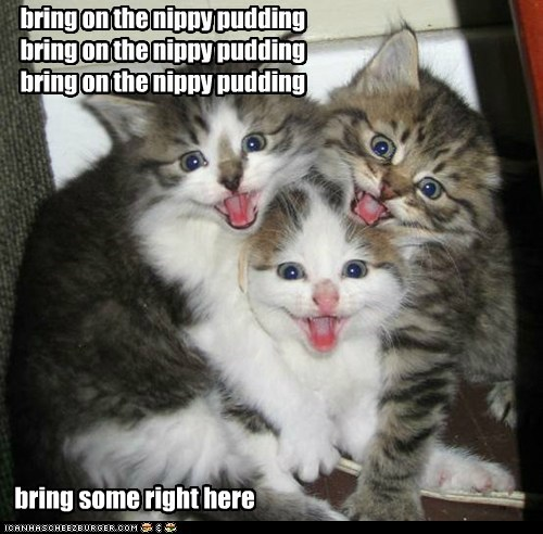 carols christmas song captions sing nip pudding Cats