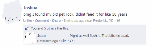 flush it,pet rock,pets,dead pet