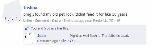 flush it pet rock pets dead pet - 6830543104