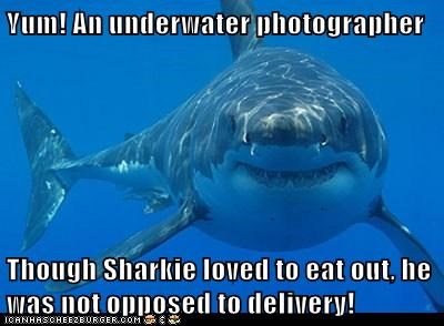 Yum! An underwater photographer