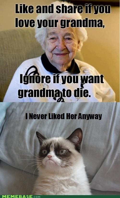 like and share,facebook,grandparents,Grumpy Cat