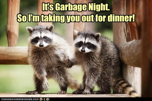 It's Garbage Night. So I'm taking you out for dinner!