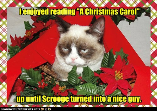 christmas 12 days of catmas captions Grumpy Cat Cats catmas - 6831895296