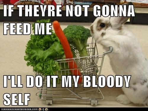 bunnies vegetables lettuce shopping do it yourself feed me carrot broccoli food