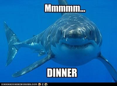 Mmmmm... DINNER