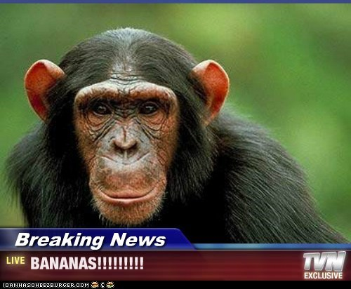 Breaking News - BANANAS!!!!!!!!!