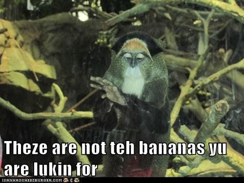 star wars,bananas,not the droids,monkey,jedi mind trick