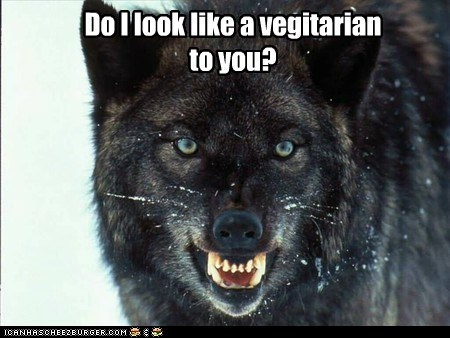 wolves,insanity,vegitarian,mistake,eating you