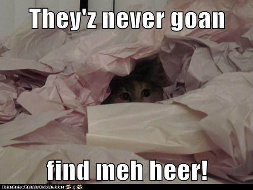 They'z never goan  find meh heer!