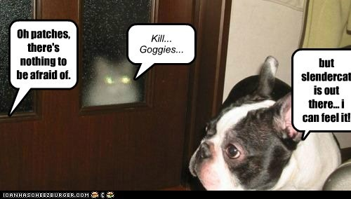 scary dogs slender man laser eyes boston terrier Cats monster