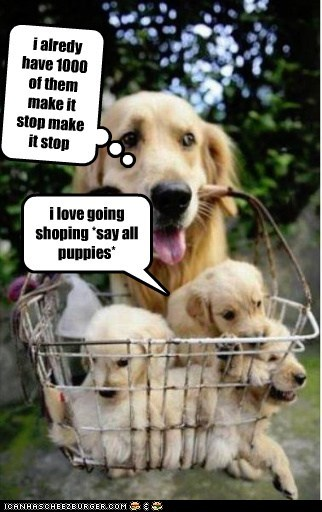 Cleverness Here i love going shoping *say all puppies* i alredy have 1000 of them make it stop make it stop