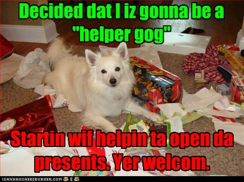 "Decided dat I iz gonna be a ""helper gog"" Startin wif helpin ta open da presents. Yer welcom."
