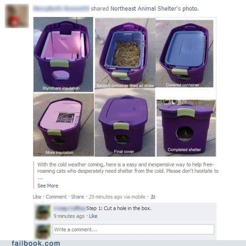cat shelter winter Cats d-k-in-a-box failbook g rated