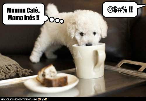 Mmmm Cafe.. Mama Ines !! - - @$#% !!