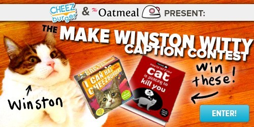blog cheezburger contests prizes winston caption contest Cats win - 6836761088